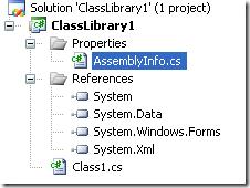 AssemblyInfo file